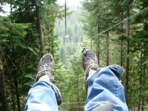 Whistler Zip Line