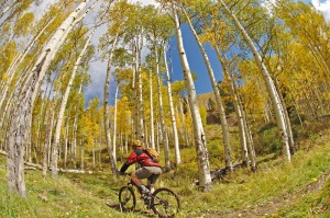 Biking in Telluride