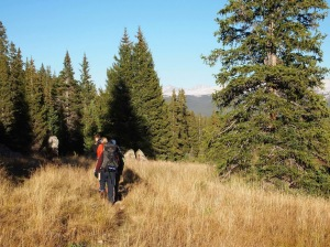 10th Mountain Division Huts - hiking in