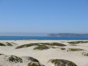 Coronado beaches