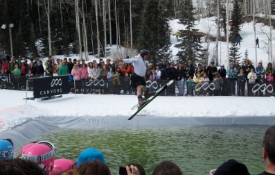 pondskimmer mid air