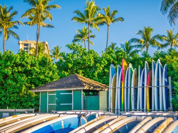 Surfboards in Hawaii