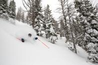 jackson-hole-griffin-post-powder[3]